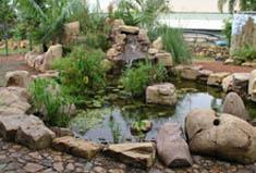 rock_garden