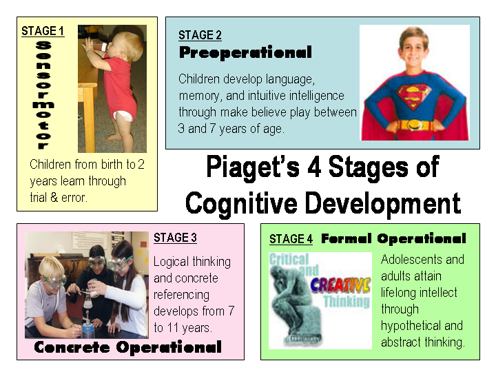 the piagets stage of theory of cognitive development Premier theory of cognitive development currently available  sensory-motor  and preoperational stages, have attracted an increasingly rich corpus of  replication.