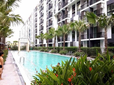 Sale condo 1 bed garden view in ski sukhumwit 105 near to central